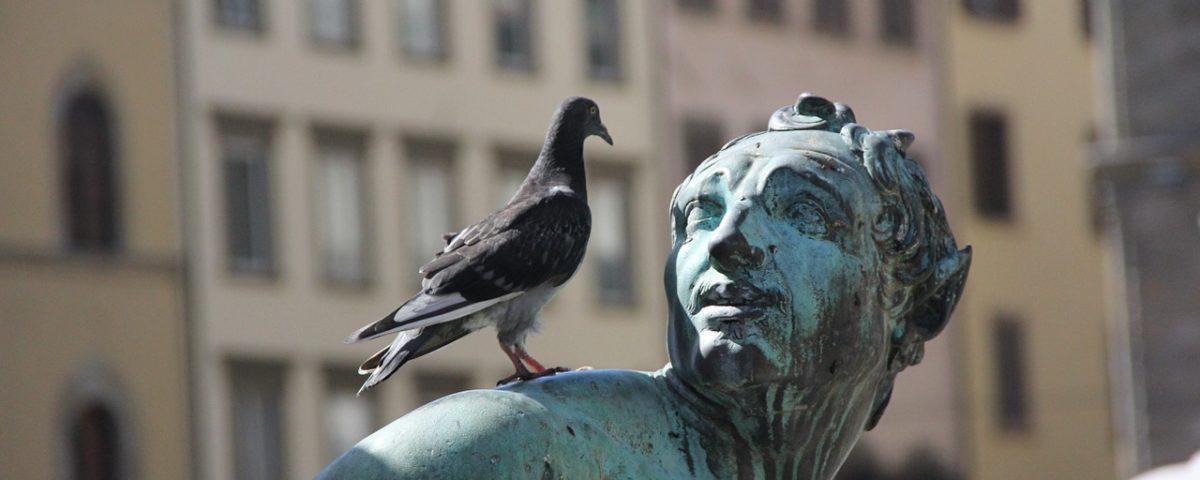 ptak na posągu