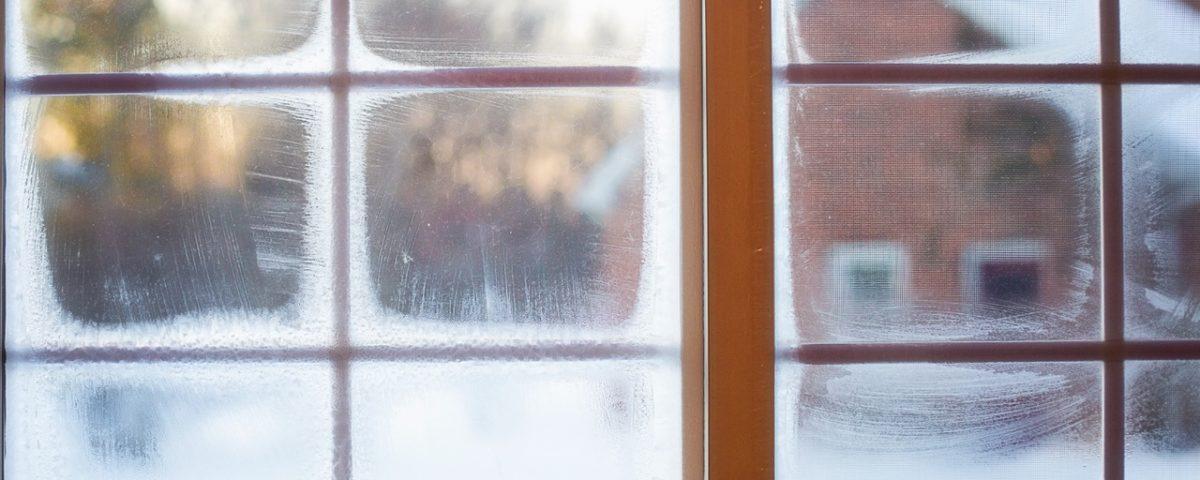 mycie okien poznań